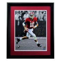 AJ McCarron Signed Alabama Crimson 23x27 Custom Framed Photo Display (Radtke COA)