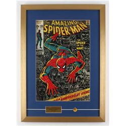 The Amazing Spider-Man 18x25 Custom Framed Comic Book Print Display with Vintage Pin