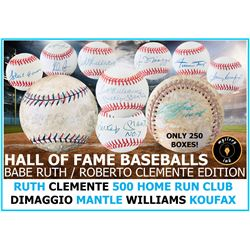 Mystery Ink Hall of Fame Baseball Babe Ruth / Clemente Mystery Box Edition! 1 HOF Signed Baseball In