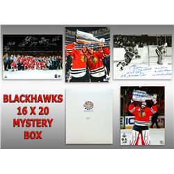 Chicago Blackhawks Signed Mystery Box 16x20 Photo - Champions Edition Series 3 (Limited to 75)