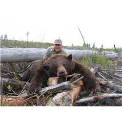 5 Day Spring Black Bear Hunt