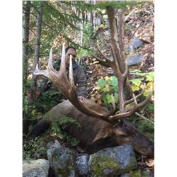 7 Day Rocky Mountain Elk Hunt in Southern BC