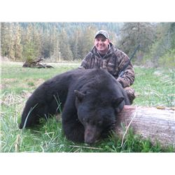 5 Day Spring Coastal Black Bear Hunt