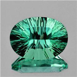 Natural AAA Emerald Green Blue Fluorite 18.35 Ct - Fl