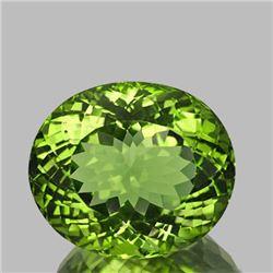 Natural AAA Green Apatite 3.26 Ct (Flawless-VVS1)