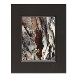 "George Marlowe, ""Textures 3.4"" Hand Signed Fine Art Photography with Certificate of Authenticity"