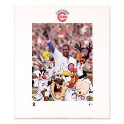"""Looney Tunes Chicago Cubs"" Collectible Print from Warner Brothers Featuring Sammy Sosa with Hologra"