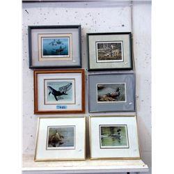 6 Framed Wild Life Prints