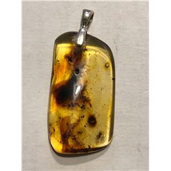 Beautiful Amber Sterling Silver Pendant Filled with Large Insects 4 Grams in Weight