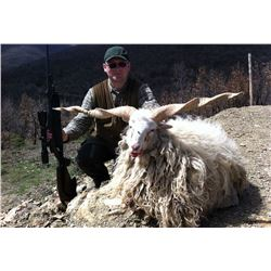 SAFARI INTERNATIONAL: 5-Day Racka Sheep Hunt for One Hunter and One Non-Hunter in Macedonia - Includ