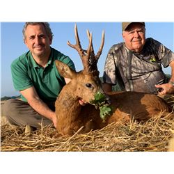 ESPACAZA: 4-Day Red Stag, Fallow Deer OR Roe Deer Hunt for Two Hunters in Spain - Includes Trophy Fe