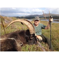 CELTIC FIELD: 3-Day Sika Stag and Ibex Hunt for One Hunter in Ireland - Includes Trophy Fees