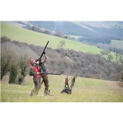 G&G HUNTING: 1-Day/1-Night Driven Pheasant and Red Partridge Wingshooting Adventure for Four Hunters