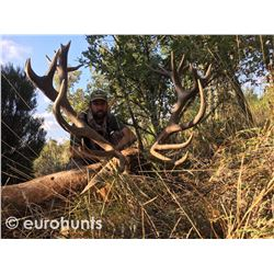 EUROHUNTS: 4-Day Free-Range Iberian Red Stag Hunt for Two Hunters in Spain - Includes Trophy Fees an