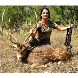 RECORDBUCK RANCH: 3-Day/3-Night Exotic Game Trophy Hunt for One Hunter and One Non-Hunter with CRAIG