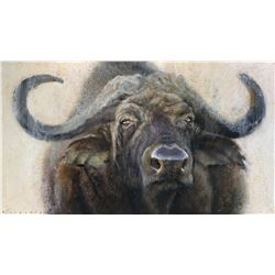 DAVID FREDERICK RILEY: Original Cape Buffalo Oil Painting by David Frederick Riley