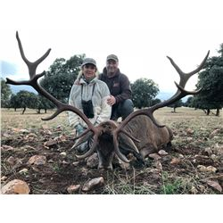 CAZATUR: 4-Day Spanish Red Deer OR European Fallow Deer Hunt for One Hunter and One Non-Hunter