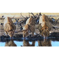 "ECHOES OF AFRICA: ""The Banyini Coalition"" - Original Oil Painting by Gareth Hook"