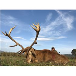 4ACES OUTFITTERS: 7-Day Free-Range Iberian Red Stag and Beceite Ibex Hunt for Two Hunters in Spain -