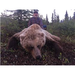ALASKA BIG GAME: 8-Day Grizzly Bear Hunt for One Hunter in Alaska - Includes Trophy Fee