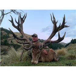 SPEY CREEK: 5-Day Red Stag Hunt for Two Hunters and Two Non-Hunters in New Zealand - Includes Trophy