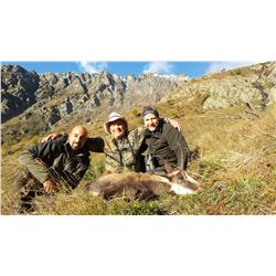 ITALIAN SAFARIS: 3-Day/4-Night Alpine Chamois Hunt for Two Hunters and Two Non-Hunters in Piedmont,