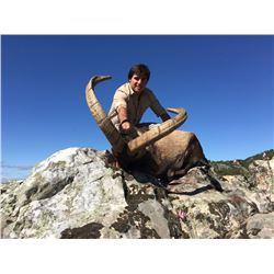 GUILLERMO ROWE: 5-Day Spanish Ibex Hunt for One Hunter in Spain - Includes Trophy Fee