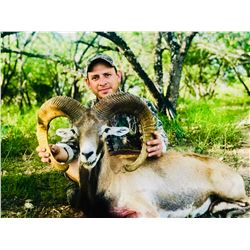 RANN/777: 3-Day/4-Night Exotic Game Hunt for Two Hunters in Hondo, Texas - Includes Trophy Fees