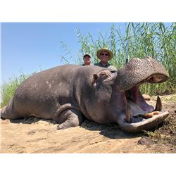 THORMAHLEN: 10-Day Trophy Hippo Hunt for One Hunter and One Observer in Namibia - Includes Trophy Fe