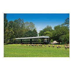 ROVOS RAIL: 5-Day Luxurious Rovos Rail Wingshooting Adventure for One Hunter and One Non-Hunter in S