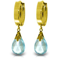 Genuine 6 ctw Blue Topaz Earrings Jewelry 14KT White Gold - REF-47R4P