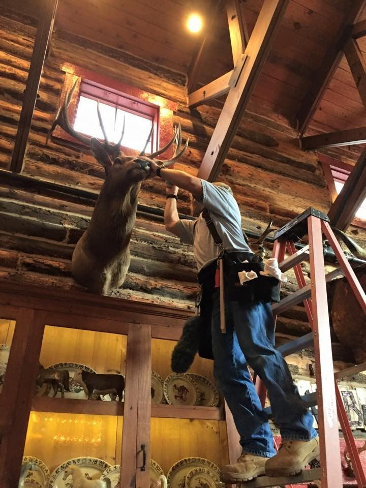 TROPHY ROOM CLEANING (100% FULLY DONATED) HEADHUNTER TROPHY CARE LLC