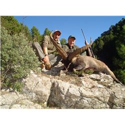 3 - DAY BECEITE IBEX HUNT FOR 2 HUNTERS (Includes Trophy Fees) (100% FULLY DONATED) SMC SPAIN HUNTIN