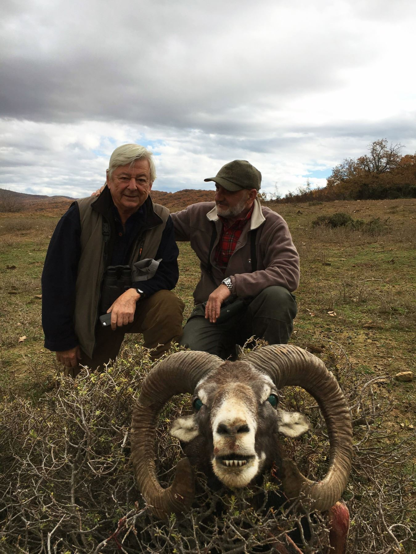 5 - DAY MOUFLON HUNT IN MACEDONIA FOR 2 HUNTERS (Trophy fee for 1 mouflon and daily rates for 2 hunt