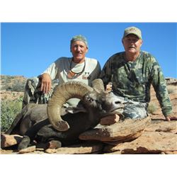 UTAH DIRTY DEVIL HENRY MOUNTAINS / LA SAL / SAN JUAN / DESERT SHEEP PERMIT UTAH WSF