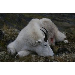 10 - DAY MOUNTAIN GOAT/CARIBOU or MOOSE HUNT IN BRITISH COLUMBIA FOR 1 HUNTER (Trophy fee included)