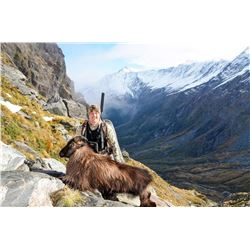 6 - DAY/5 - NIGHT NEW ZEALAND HUNT FOR RED STAG UP TO 330 SCI, TAHR AND CHAMOIS FOR 1 HUNTER AND 1 N
