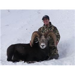 BRITISH COLUMBIA SPECIAL MOUNTAIN SHEEP PERMIT MINISTRY OF FORESTS, LANDS, NATURAL RESOURCE OPERATIO