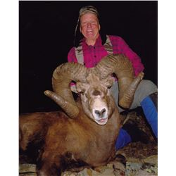 ALBERTA MINISTER'S SPECIAL BIGHORN SHEEP PERMIT THE ALBERTA FISH & GAME ASSOCIATION