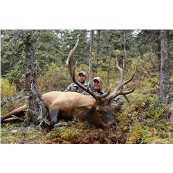 10 - DAY HORSEBACK HUNT FOR MTN GOAT, MOOSE OR ELK (Hunter's Choice) FOR 1 HUNTER IN TOAD RIVER BRIT