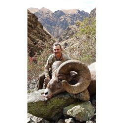 IDAHO BIGHORN SHEEP PERMIT  IDAHO DEPARTMENT OF FISH AND GAME