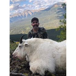 11 - DAY MOUNTAIN GOAT HUNT FOR 1 HUNTER IN BRITISH COLUMBIA TERMINUS MOUNTAIN OUTFITTERS