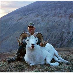 10 - DAY 1X1 FANNIN OR DALL'S SHEEP HUNT IN THE YUKON BLACKSTONE OUTFITTERS