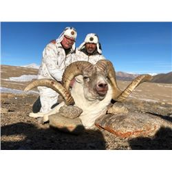 MARCO POLO CONSERVATION PERMIT IN TAJIKISTAN  COMMITTEE OF THE ENVIRONMENTAL PROTECTION UNDER THE GO