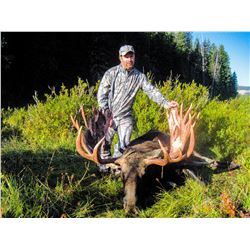 WYOMING GOVERNOR'S SHIRAS MOOSE LICENSE WYOMING GAME & FISH DEPARTMENT