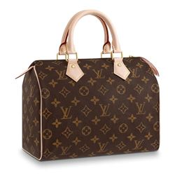 LOUIS VUITTON PURSE (100% FULLY DONATED) LADIES OF RMBS
