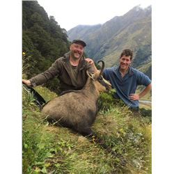 5 - DAY NEW ZEALAND CHAMOIS HUNT FOR 1 HUNTER AND 1 NON-HUNTER (Trophy fee for 1 chamois is included