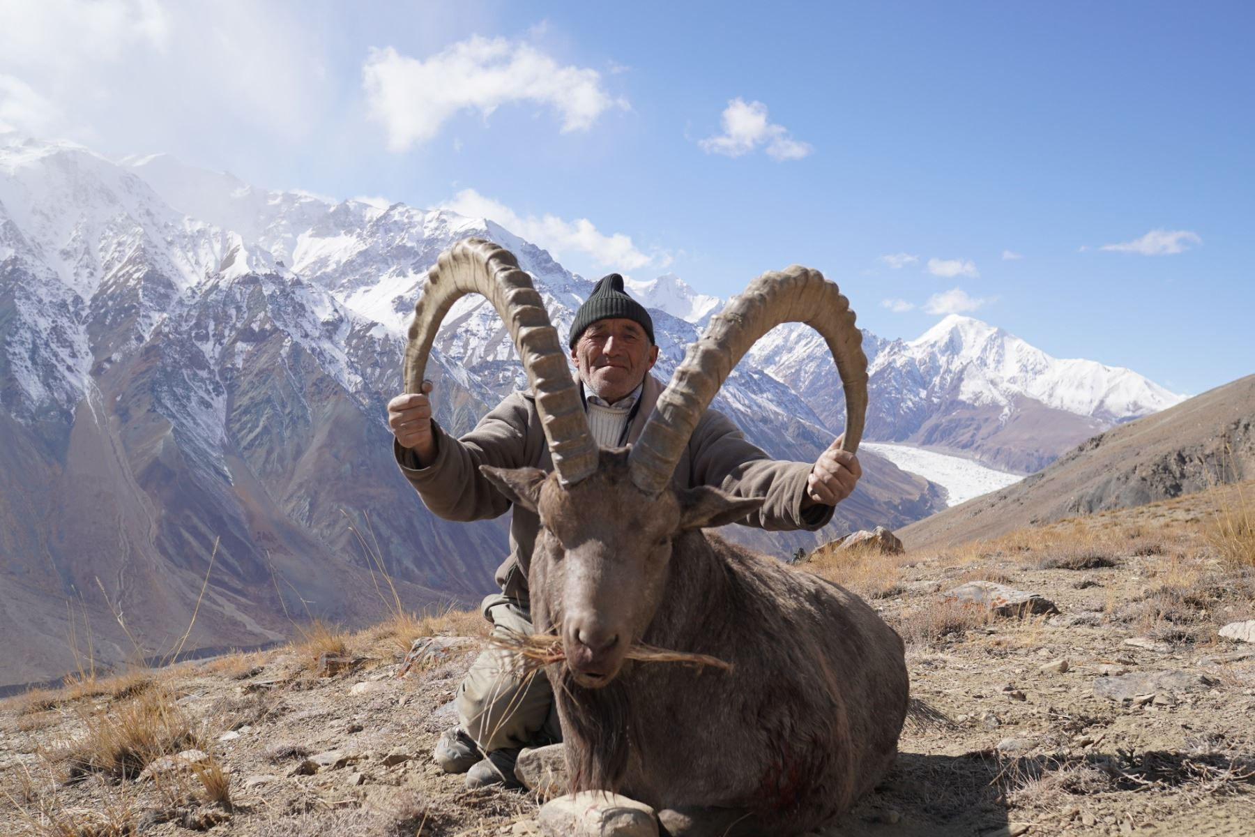 CENTRAL ASIAN IBEX CONSERVATION PERMIT IN TAJIKISTAN COMMITTEE OF THE ENVIRONMENTAL PROTECTION UNDER