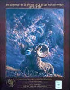 Eye of the Storm  framed print by Vivi Crandall , 1997