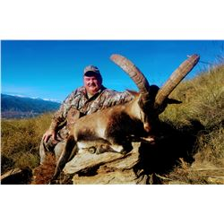 SPANISH IBEX HUNTS 5-day Hunt for Southeastern Ibex in Spain for 1-Hunter and 1 Observer
